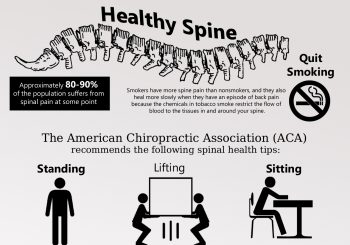 A Fine, Healthy Spine